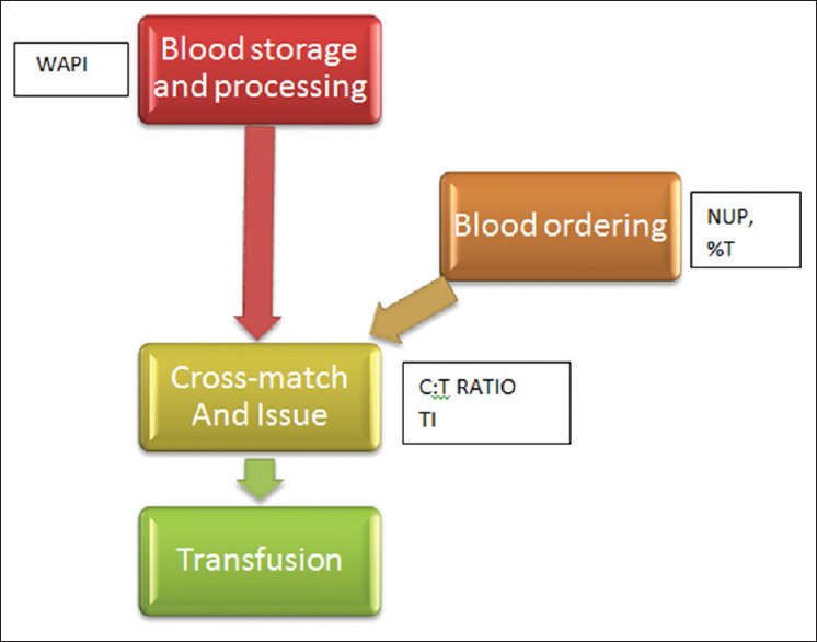 Figure 1: Flowchart showing blood handling, ordering and issue, and the indices used to monitor each step